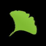 Gingko App