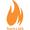 Torch lms 1513167129 logo