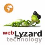 webLyzard screenshot