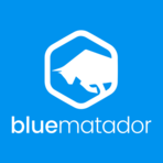 Blue Matador screenshot