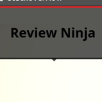 MyReviewNinja screenshot