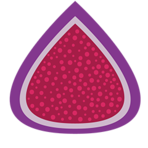 Figment POS Software Logo