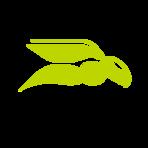 Hornetsecurity logo
