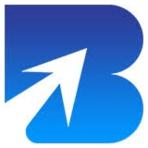 Bizex Software Logo