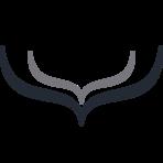 Hull Software Logo