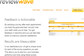 Review WAVE screenshot