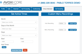 AVOXI Core screenshot