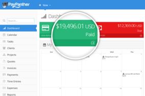 Pay Panther screenshot