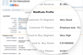 MadKudu screenshot