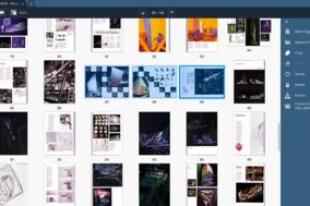 Movavi PDF Editor screenshot